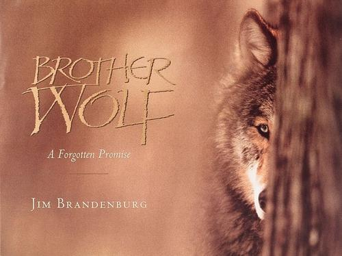 Download Brother wolf
