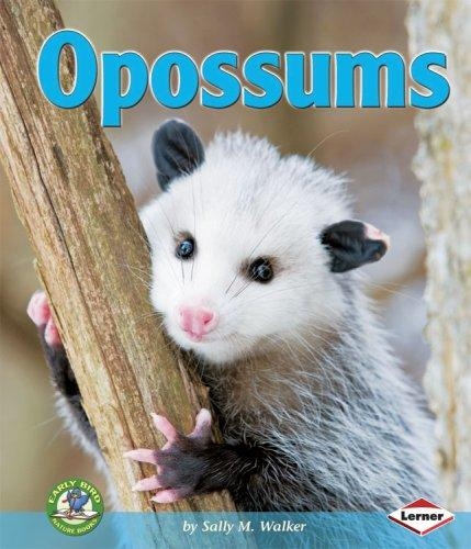 Download Opossums (Early Bird Nature Books)