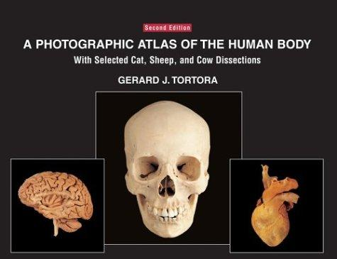 A photographic atlas of the human body