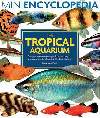 Download The tropical aquarium
