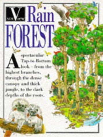Rainforest (New View)