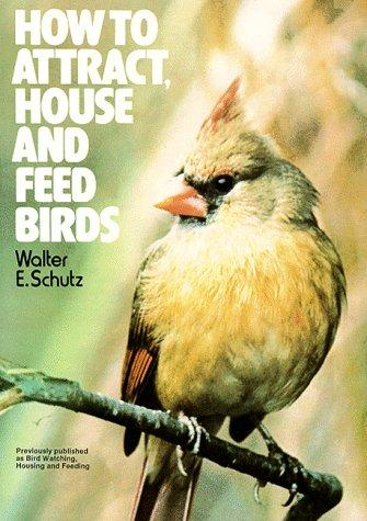 How to Attract, House and Feed Birds