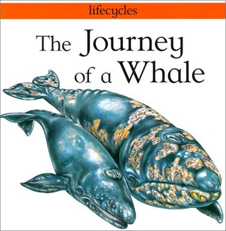 Journey of a Whale (Lifecycles)