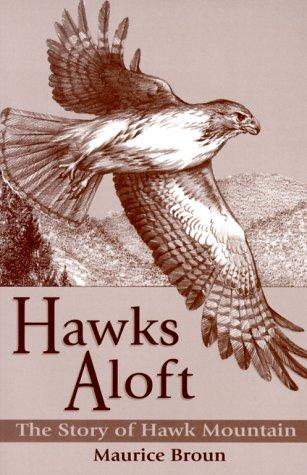 Download Hawks Aloft