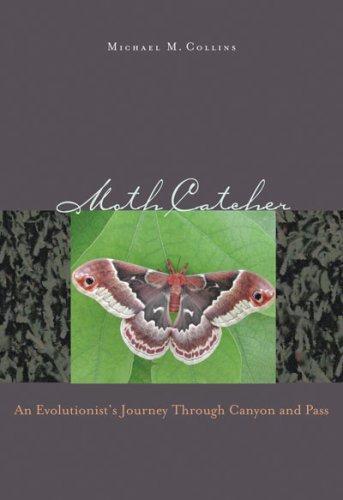 Download Moth Catcher
