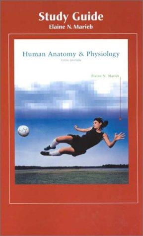 Download Human Anatomy & Physiology (Study Guide)