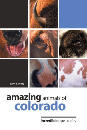 Amazing animals of Colorado by Gayle Corbett Shirley