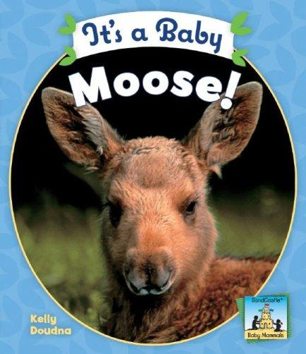 It's a Baby Moose! (Baby Mammals) by Kelly Doudna