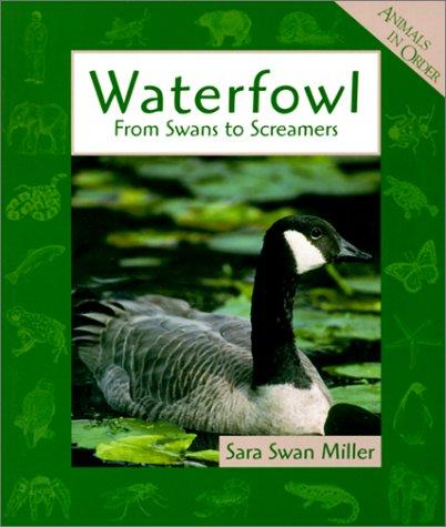 Waterfowls by Sara Miller