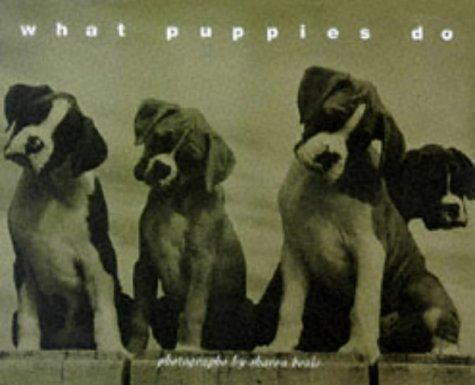 What puppies do by Sharon Beals